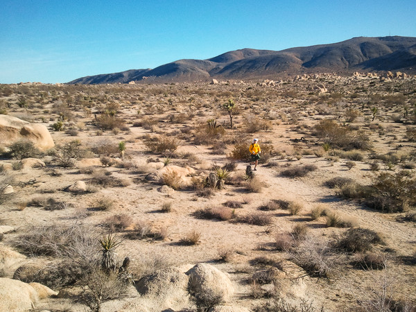 Running in the Expanse of the Desert