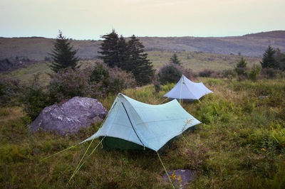 Cirriform Shelters in the Wild.