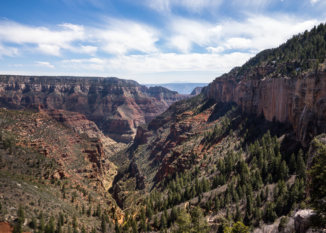 North Rim Views