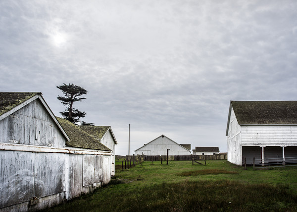 Buildings of Pierce Point Ranch near Tomales Point