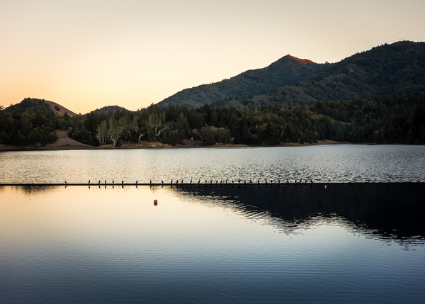 Mt. Tam & Lagunitas Lake