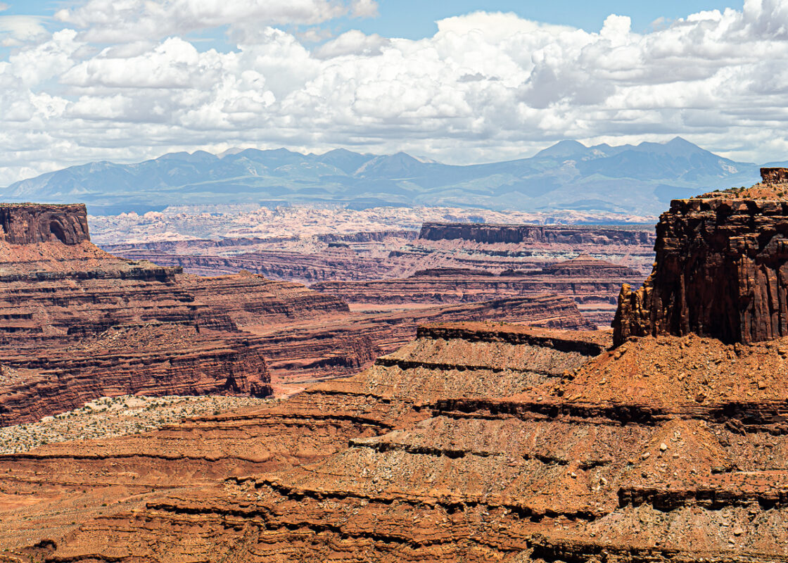 La Sal Mountains from Shafer Overlook